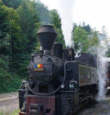DSC05928 (761x800)